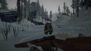 Image du jeu The Long Dark
